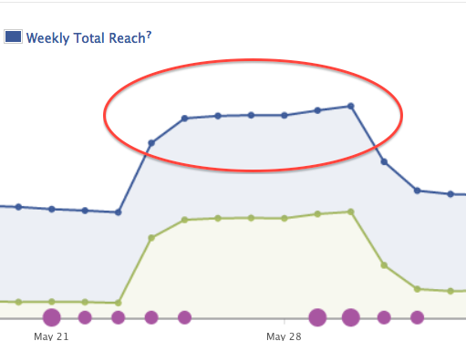 Read more about the article Why and How to Use Facebook Promoted Posts